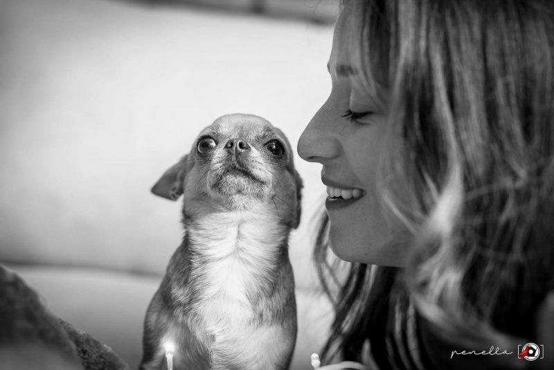 Foto en blanco y negro de mascotas en Asturias, Oviedo, Avilés y Gijón de la autora Penella Fotografía