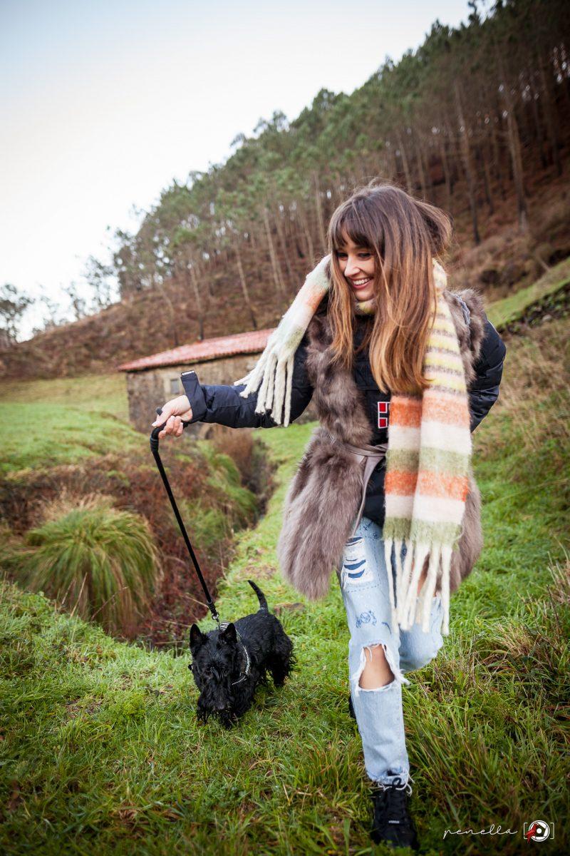 Sesión de fotos a mascotas, perros y gatos de Penella Fotografía